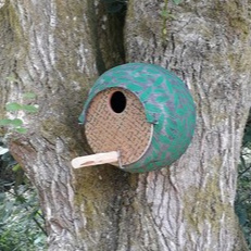 little owl nestbox