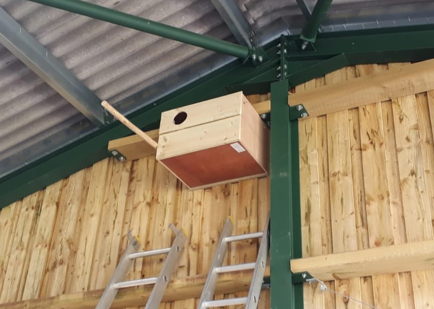 indoor barn owl nestbox